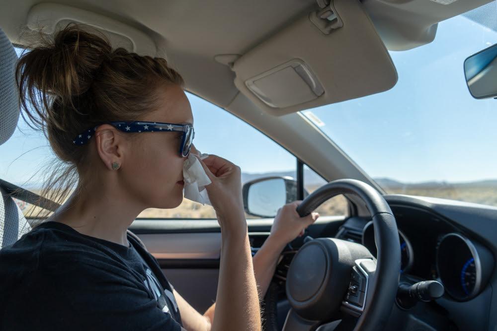 Los síntomas de las alergias, una molestia al volante.