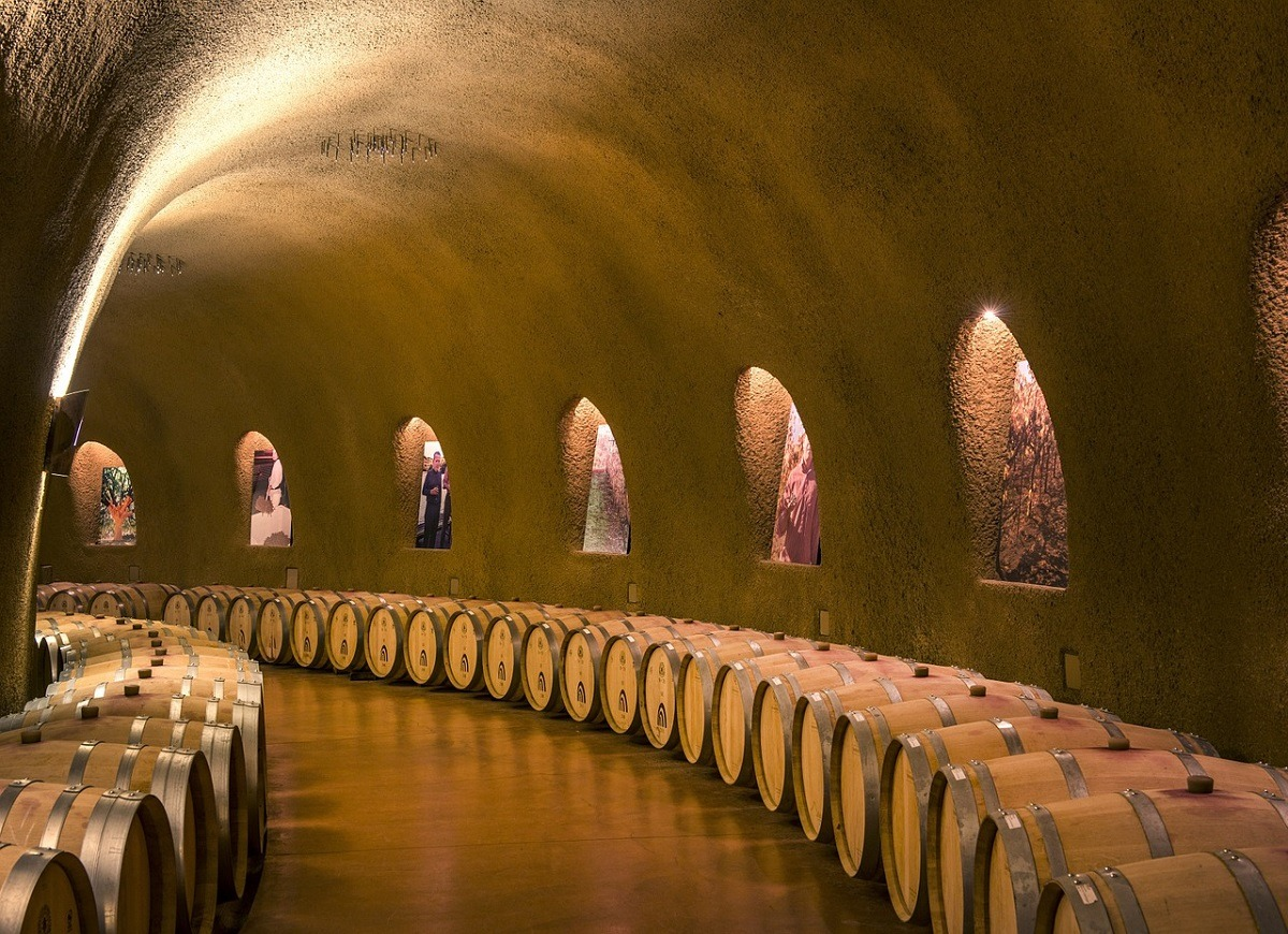 vino-bodega-valle-napa-california-turismo