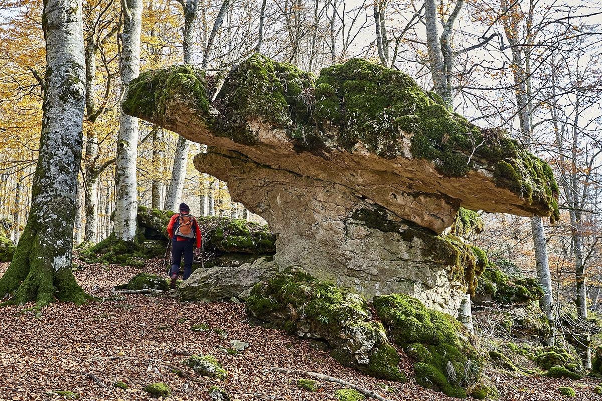 Sabores y campo (Turismo de Navarra)