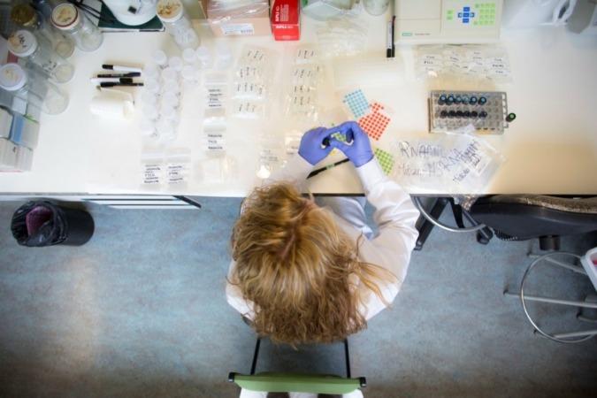 Un laboratorio de investigación en el edificio de los Olivos de la UPNA en el campus de Arrosadia, en Pamplona.