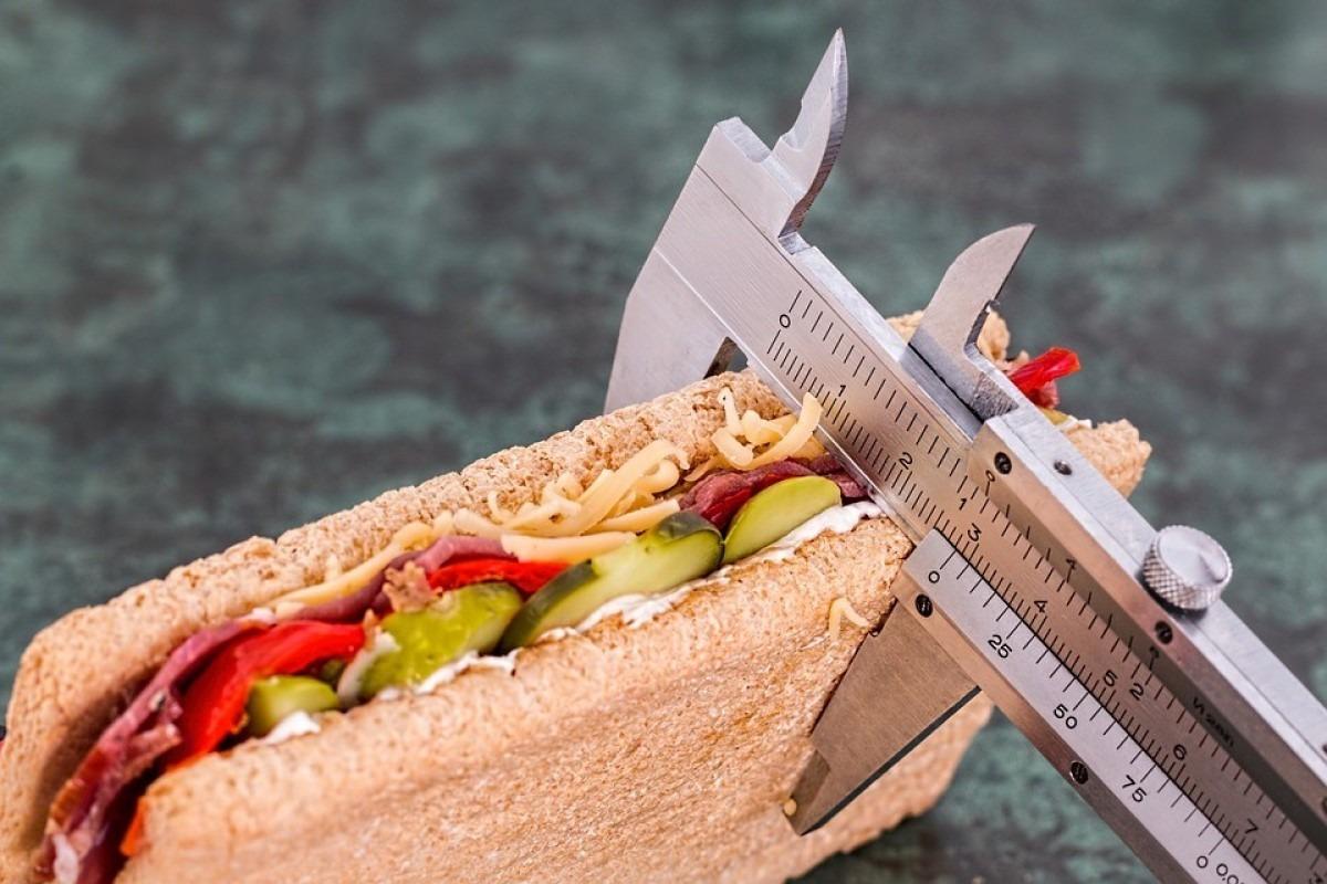 sandwich-Alimentacion-Nutricion