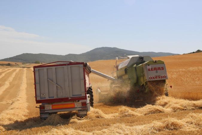 La característica de la cosecha de cereal en Navarra ha sido la irregularidad.