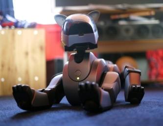 Las mascotas robóticas ya son una realidad.